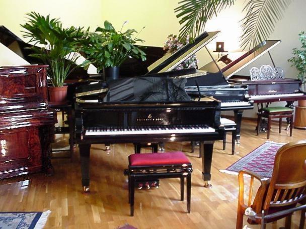 Fluegel und Pianos von Friedrich Howaniaetz